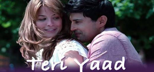 TERI YAAD-letslyrics